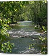 The River In Spring Canvas Print