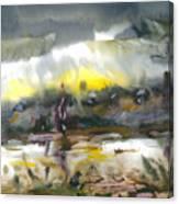 The River Nistru IIi Canvas Print