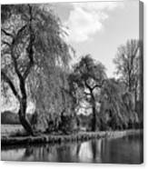 The River Wey,guildford, Surrey,england  Canvas Print