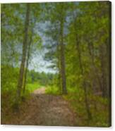 The Road Goes Ever On And On Canvas Print