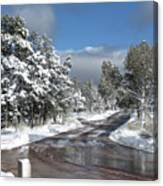 The Road Through Winter Canvas Print