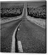 The Road To Shoshone Canvas Print
