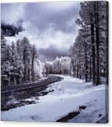 The Road To Snow Canvas Print