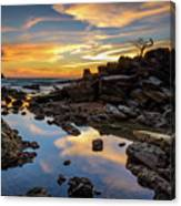 The Rock Bonsai During Sunset  Canvas Print