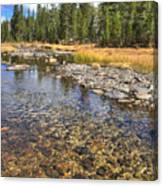 The Rocks Of Rock Creek Canvas Print