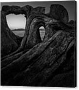 The Roots Of The Sleeping Giant Bw Canvas Print