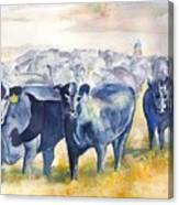 The Round Up Cattle Drive  Canvas Print
