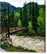 The Rushing Animas River - Colorado Canvas Print