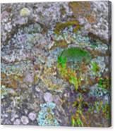The Sacred Mountain Canvas Print