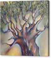 The Sacred Tree Canvas Print