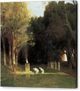 The Sacred Wood Canvas Print