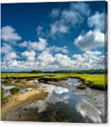 The Salt Marshes, Wellfleet MA Canvas Print