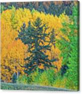 The Sanctity Of Nature Reified Through A Photographic Image  Canvas Print