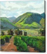 The Scent Of Citrus - Santa Paula Citrus Grove Central Coast Landscape Canvas Print