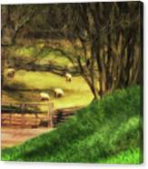 The Sheep's In The Meadow Canvas Print