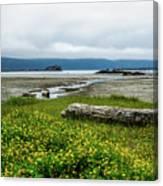 The Shoreline Canvas Print