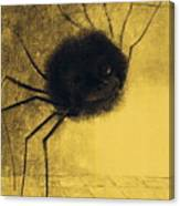 The Smiling Spider Canvas Print