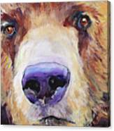 The Sniffer Canvas Print