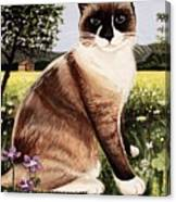 The Snowshoe Cat Canvas Print
