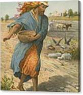 The Sower Sowing The Seed Canvas Print