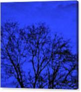 The Sparkle Tree Canvas Print