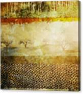 The Spirit Trees Canvas Print