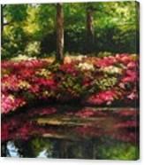 The Spring In Washington Canvas Print