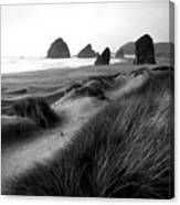 The Stacks Bw Canvas Print