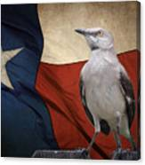 The State Bird Of Texas Canvas Print