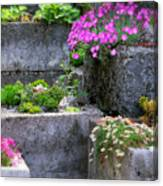 The Stone Planters Canvas Print