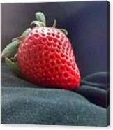 The Strawberry Portrait Canvas Print