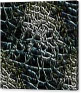The Stream Bed Canvas Print