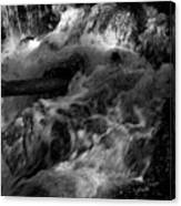 The Stream In Bw Canvas Print