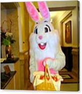 The St.regis Easter Bunny Canvas Print