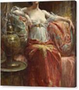 The Sultan's Favourite Canvas Print