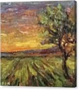 The Sun Rising / El Sol Naciente Canvas Print