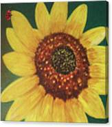 The Sunflower In Our Garden Canvas Print