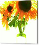 The Sunflowers In A Glass Vase. Canvas Print