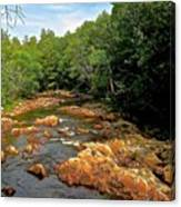 The Swift River In South Tamworth Canvas Print