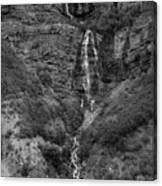 The Tall Fall Canvas Print