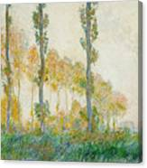 The Three Trees Canvas Print