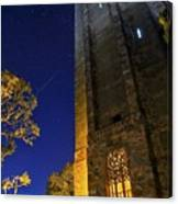 The Tower At Night Canvas Print