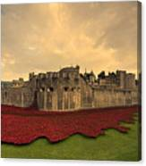 The Tower Poppies  Canvas Print