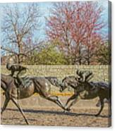 The Track - Thoroughbred Park - Lexington Kentucky Usa Canvas Print