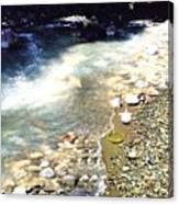 The Treasure Of River Usora  Canvas Print