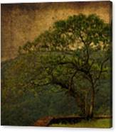 The Tree And The Range Canvas Print