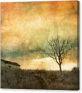 The Tree And The Roof Top Canvas Print
