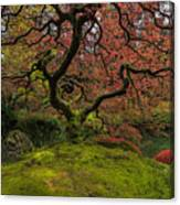 The Tree In Spring Canvas Print