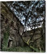 The Tree In The Fort - L'albero Tra Le Mura Del Forte Paint Canvas Print