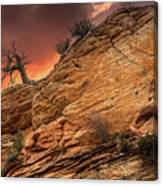 The Tree Of Zion Canvas Print